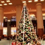 ☆ロビーにクリスマスツリーが登場!