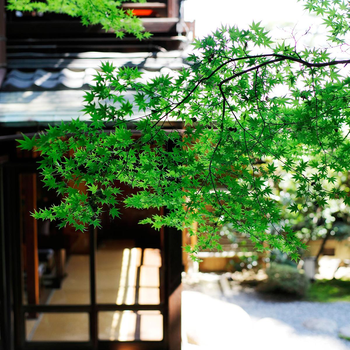 ●粟田山荘和装プラン